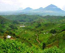 Virunga1.jpg Virunga Virunga Virunga1