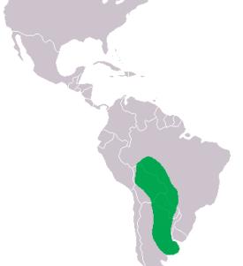 Caiman yacare Distribution.png Yacaré Yacaré Caiman yacare Distribution