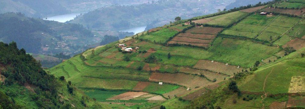 virunga montañas viajar Virunga Virunga virunga parque
