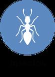 informacion invetebrados animales, blog de animales, animales salvajes, curiosidades de animales Animales invertebrados