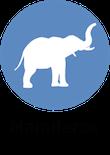 informacion mamiferos animales, blog de animales, animales salvajes, curiosidades de animales Animales mamiferos