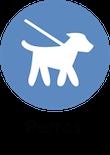 informacion perros animales y mascotas