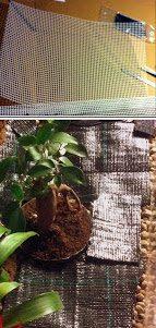 sustrato terrarios Sustrato para terrarios de dendrobates Sustrato para terrarios de dendrobates sustrato terrarios