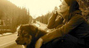 31 (2) La historia de Mason, el perro que salvó la vida de su dueña enfrentándose a un lobo. La historia de Mason, el perro que salvó la vida de su dueña enfrentándose a un lobo. 31 2