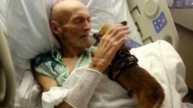 perrito y paciente Un enfermo y su perro se curan mutuamente. Un enfermo y su perro se curan mutuamente. perrito y paciente