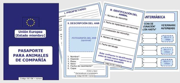 pasaporteok Nueva normativa europea para viajar con mascotas Nueva normativa europea para viajar con mascotas pasaporteok