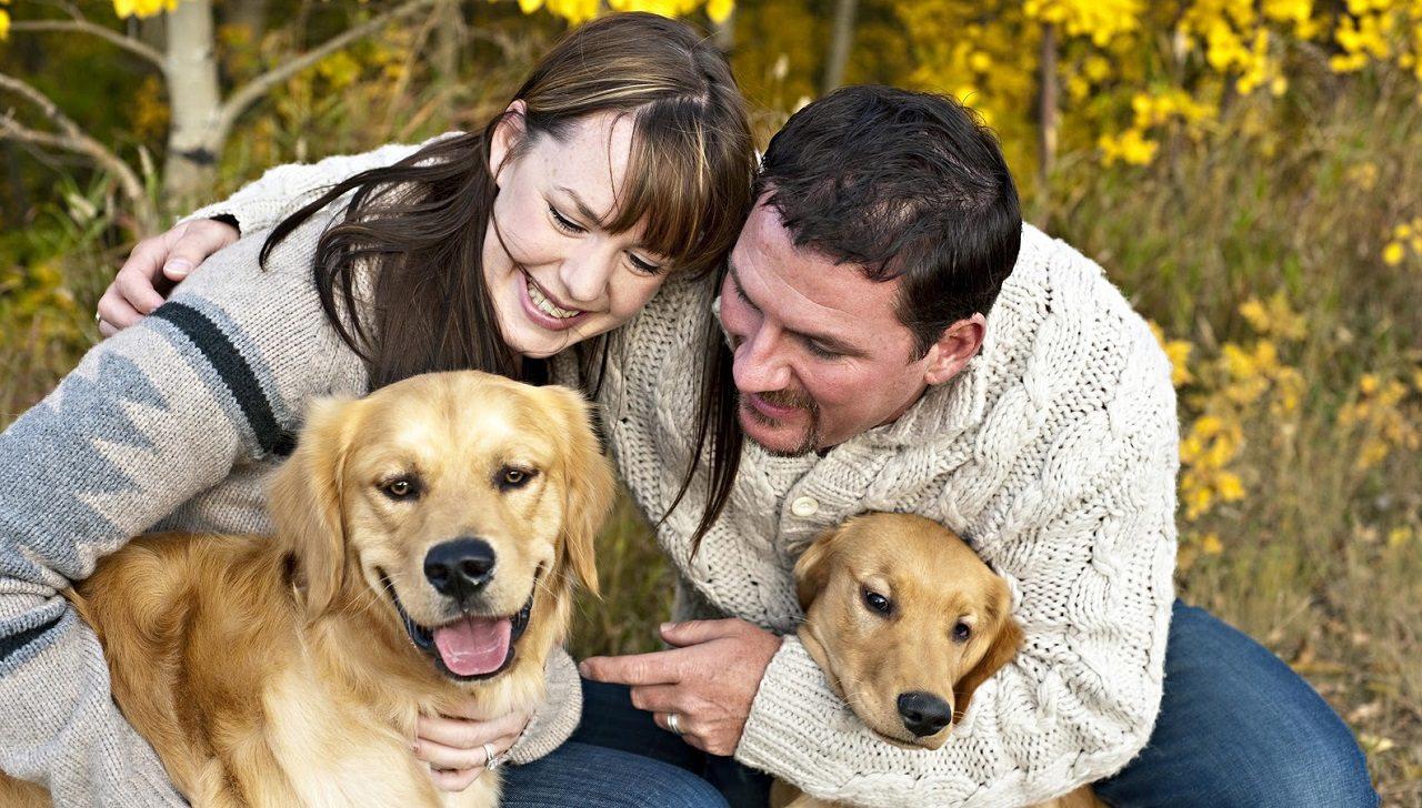 perros_en_familia Una buena convivencia con la familia y los vecinos Una buena convivencia con la familia y los vecinos perros en familia