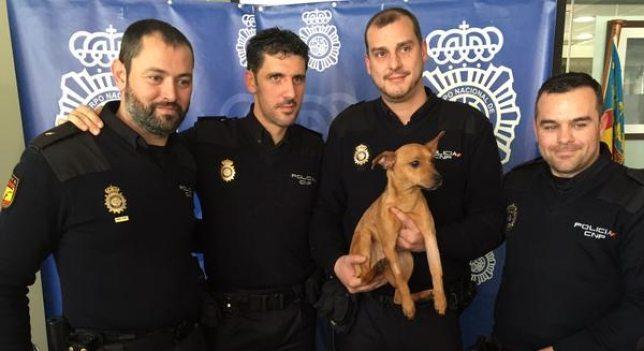 31 (5) Unos policías salvana un perro y le pagan la operación para que no se quede cojo Unos policías salvana un perro y le pagan la operación para que no se quede cojo 31 5