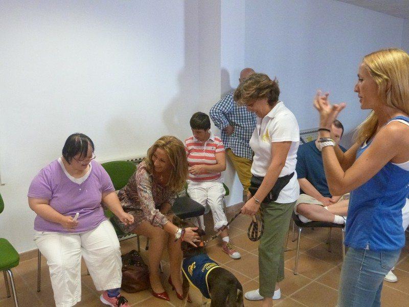 arc_198162_g Qué es un coterapeuta canino Qué es un coterapeuta canino arc 198162 g