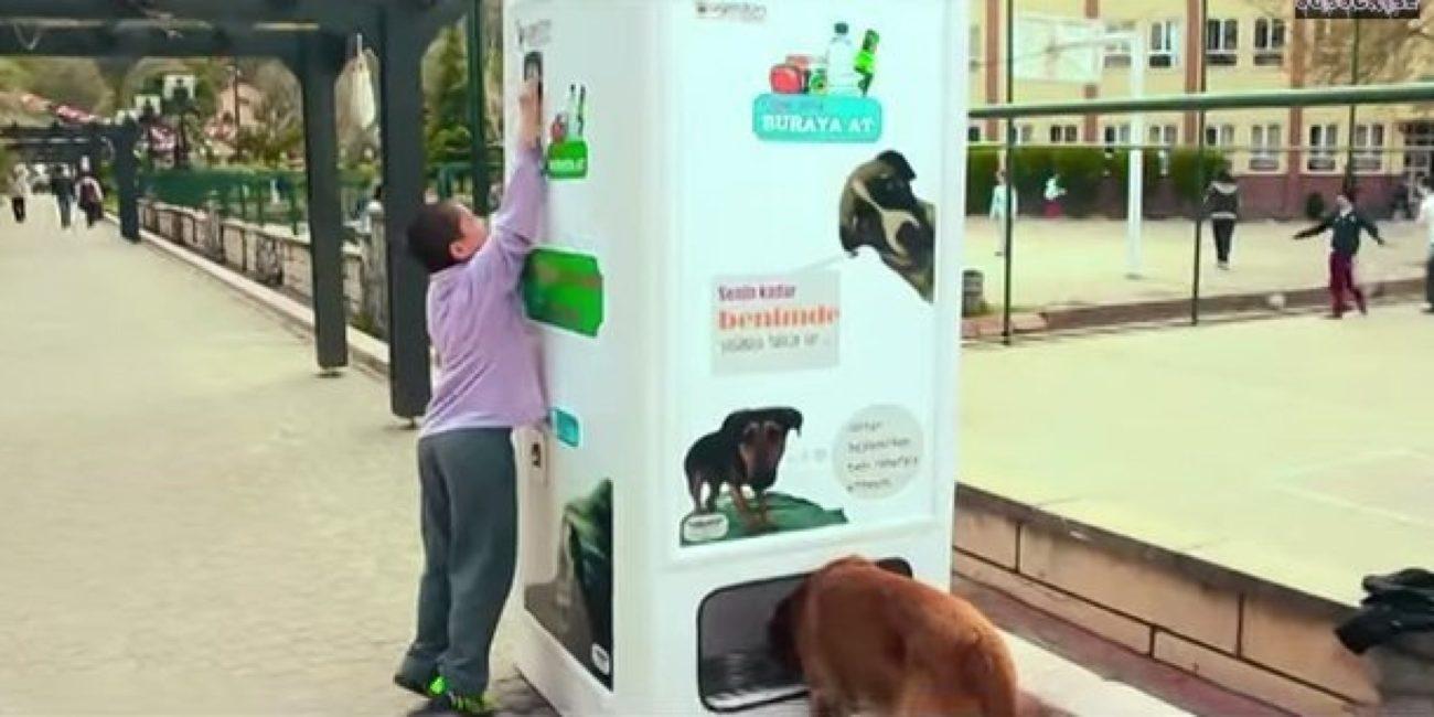 wikifaunia Reciclando ayudaras a un perro de la calle Reciclando ayudaras a un perro de la calle o VENDING MACHINE facebook