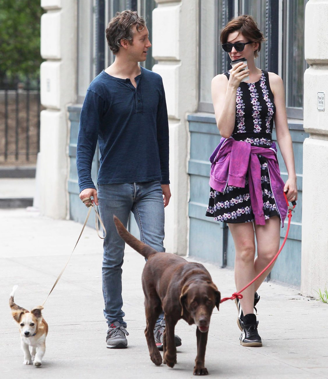 anne-hathaway-dogs Famosos que han adoptado animales Famosos que han adoptado animales anne hathaway dogs