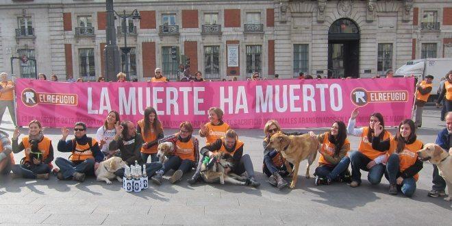 destacada_th_86d085836c8204a4ef07c18efaea8ae1 En la Comunidad de Madrid sacrificio cero En la Comunidad de Madrid sacrificio cero destacada th 86d085836c8204a4ef07c18efaea8ae1