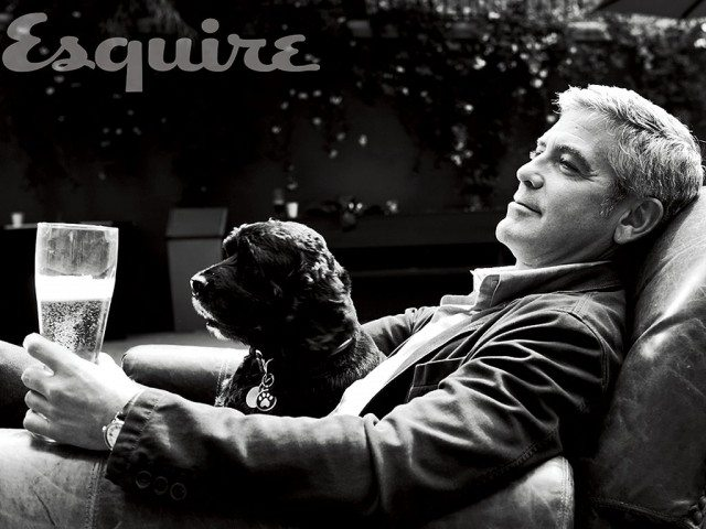 george-clooney-adopted-dog Famosos que han adoptado animales Famosos que han adoptado animales george clooney adopted dog