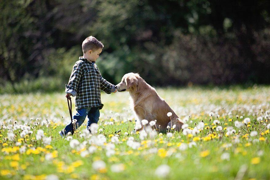 smiley-perra-de-terapia-ciega-5 Smile, la perra ciega que ayuda a personas discapacitadas Smile, la perra ciega que ayuda a personas discapacitadas smiley perra de terapia ciega 5