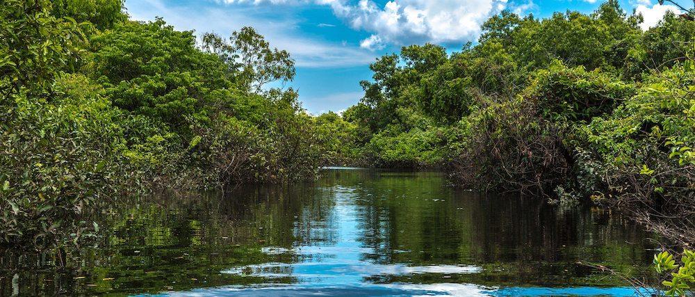 amazonas río El Amazonas, Colombia, Perú y Brasil El Amazonas, Colombia, Perú y Brasil amazonas rio