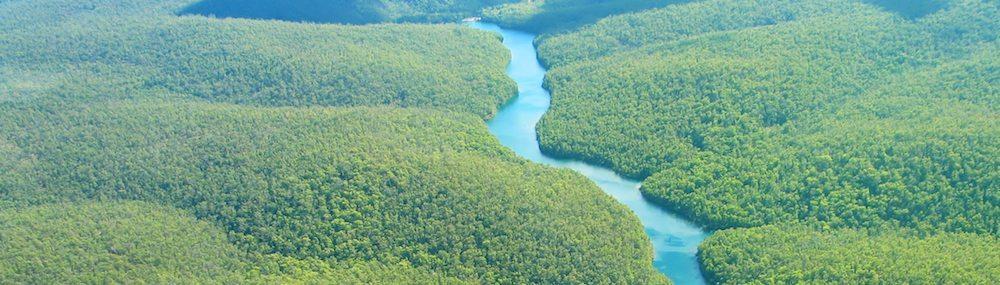 Amazonas río El Amazonas, Colombia, Perú y Brasil El Amazonas, Colombia, Perú y Brasil amazonas