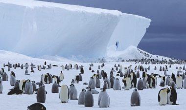 antártida viajar