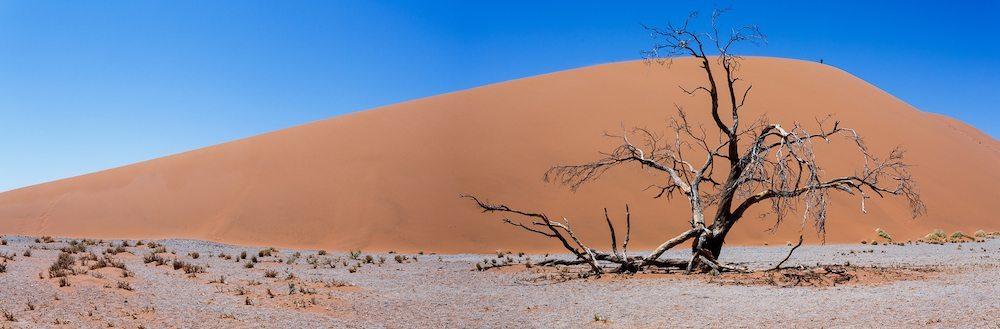 Namibia duna 45 El Desierto del Namibia El Desierto del Namibia namibia desierto duna 45