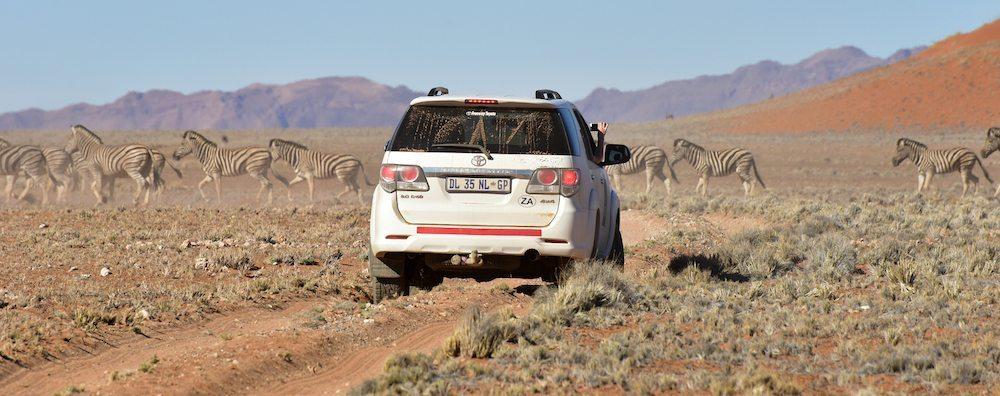 desierto de namibia El Desierto del Namibia El Desierto del Namibia namibia desierto