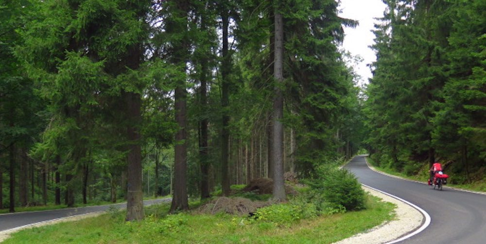 Moravia viajar Bosques de Moravia-Silesia Bosques de Moravia-Silesia IMG 2460